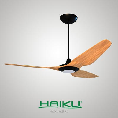 3d model haikufan free download