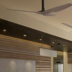 ceiling-art